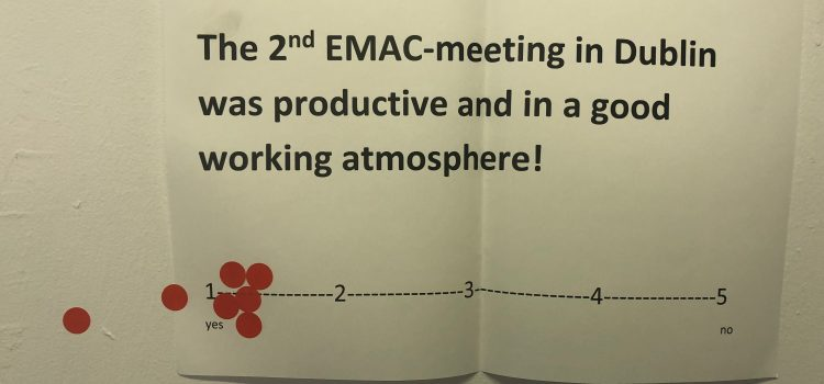 Meeting in Dublin: Activities, Impact and Learning outcomes
